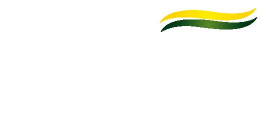 Logo_Comexim